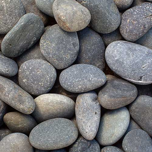 Black Beach Pebble Large Decorative Ground Cover Rock