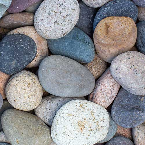 Mixed Beach Pebble Decorative Ground Cover Rock