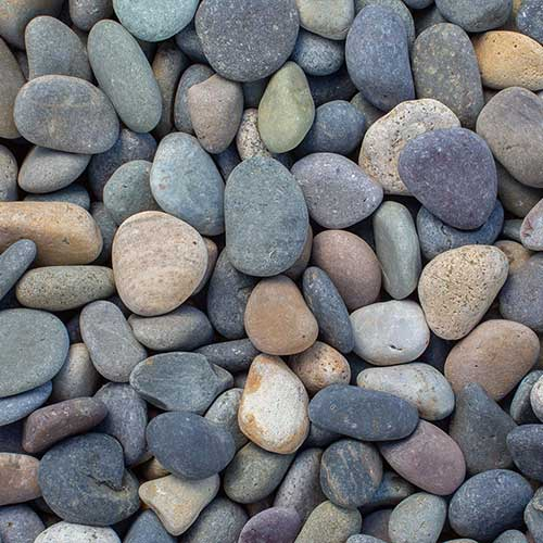 Mixed Beach Pebble Small Decorative Ground Cover Rock