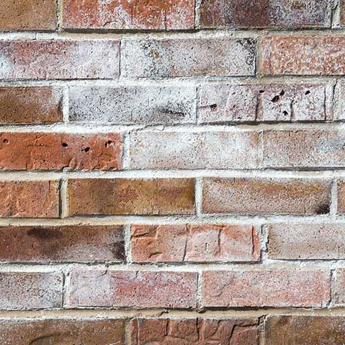 Efflorescence in Masonry Products